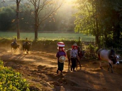 Myanmar _1600