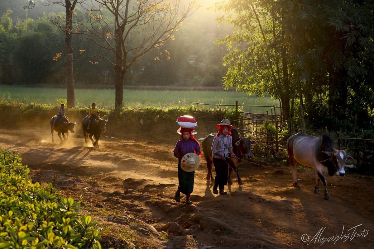 Myanmar National Geographic