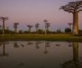 Μαδαγασκάρη
