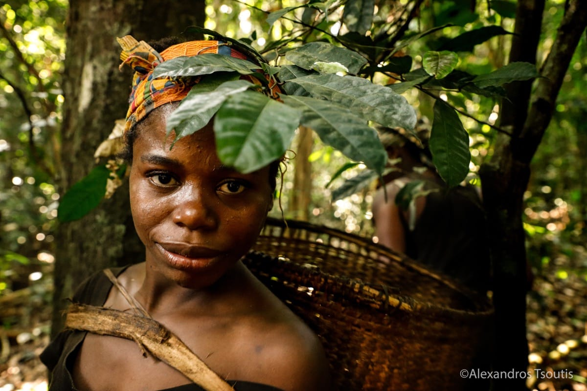Cameroon pygmies tribe forest